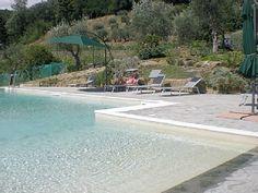 Beach entry modern pool