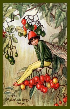 The Nightshade Fairy by Cicely Mary Barker from the 1920s. Quilt Block of vintage fairy image printed on cotton. Ready to sew.  Single 4x6 block $4.95. Set of 4 blocks with pattern $17.95.
