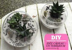 Idée cadeau // #DIY : un terrarium.      1. Disposez des cailloux dans le fond du récipient, ils vont permettre de drainer l'eau.     2. Recouvrez ensuite de terreau. Il faut environ 4cm à 5cm de fond (à peu près la même hauteur de terre que celle dans les pots de cactus)      3. Retirez délicatement la terre des racines de vos plantes     4 / 5. Disposez les cactus et/ou succulentes dans votre récipient (pour cette étape, pensez aux gants pour ne pas vous piquer… aie aie aie ouille!)