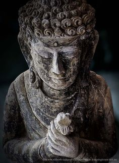 Can we ever have too many images of Buddha...thinking not. They are all so inspiring.