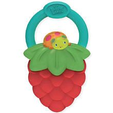 Bright Starts Vibrating Teether - Berry from babies R Us