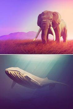 We bring you eight of our favourite low-poly illustrations and show you how to create your own.
