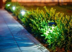 31 Landscape Lighting Ideas Walkways to Beautify Your Front Yard. Prior to you invest in any type of landscape lighting, ask yourself what your functions Best Solar Lights, Solar Walkway Lights, Solar Garden Lights, Luz Solar, Solar Led, Ideas Para El Patio Frontal, Solar Licht, Landscape Lighting Design, Luz Led