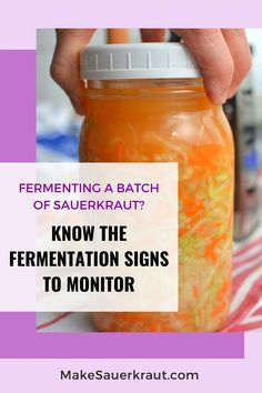 How will you know if your cabbage has already fermented? What fermentation signs should you monitor? Bubbles rising to the surface, smell, color, overflowing brine, dry sauerkraut. Watch out for these signs. This comprehensive guide will lead you through the fermentation process of homemade sauerkraut and other fermented vegetables.