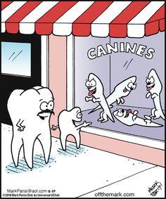 Humor dental - Humor dental Source by Humor Dental, Dental Assistant Humor, Dentist Jokes, Dental Quotes, Dental Hygiene School, Dental Life, Dental Facts, Dental Hygienist, Braces Humor