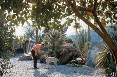 Sinatra Compound Palm Springs | AD Revisits Frank Sinatra's Palm Springs Compound : Architectural ...
