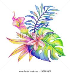abstract jungle nature, exotic flowers and leaves watercolor illustration isolated on white background - stock photo