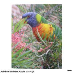 Rainbow Lorikeet Puzzle