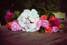 Photography by melanielinklater.com/blog