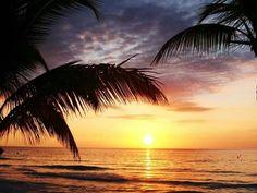 Sunset☆