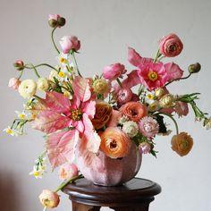 Crush Cul de Sac — jessica154blog: 7 Design Floral, Deco Floral, Arte Floral, Fresh Flowers, Colorful Flowers, Beautiful Flowers, Floral Flowers, Floral Centerpieces, Floral Arrangements