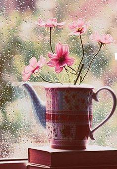 Fleur de pluie ...