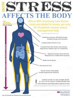 This is What Happens To Your Body When You're Stressed (Shocking Image) - Healthy Wild and Free http://healthywildandfree.com/this-is-what-happens-to-your-body-when-youre-stressed/?c=fbg