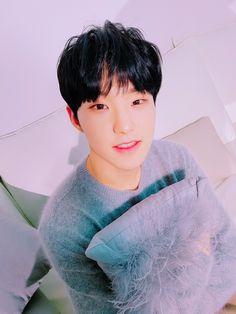 Seventeen Hoshi, Kwon Soonyoung