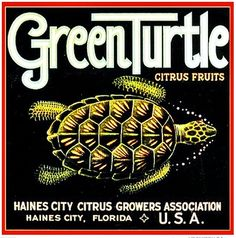 Green Turtle Brand vintage fruit crate label.