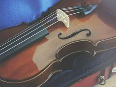 #violin #viola #czech #love #music