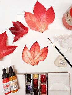 Botanical painting is the art of creating accurate pictures of plants. It's a real skill to master, but luckily there are lots of brilliant tutorials available so you can improve your painting skills. Lizzie Harper is a botanical artist who creates illustrations for books and magazines. There are lots of helpful botanical painting tutorials on her website, including one which explains how to do botanical paintings of autumn leaves.