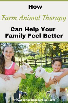 Discover how farm animal activities like cow cuddling, goat snuggling, and horseback riding can help reduce stress for your family. Animal Activities, Environmentalist, Family Matters, Raising Chickens, Reduce Stress, Your Family, Horseback Riding, Farm Animals, Feel Better