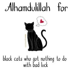 6. Alhamdulillah for black cats who got nothing to do with bad luck. #AlhamdulillahForSeries