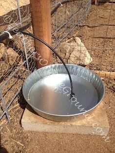 Automatic Poutlry Watering System Using Left Over Garden Drip System Pieces and Dog Water Dishes