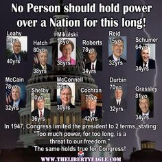 I say term limits for all political offices.