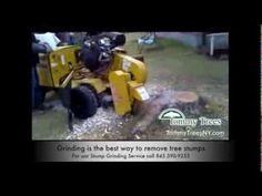 (Posted from tinymachining.com)   Stump grinding service Monroe NY 10950. We provide inexpensive stump grinding solutions to residential and commercial home owners in Monroe NY and all through…     Valve grinding service in Thousand Oaks, California. Higher Overall performance engines new and rebuilding solutions. Contact...  Read more on http://www.tinymachining.com/monroe-ny-stump-grinding-service-tommy-trees-ny-tree-solutions-845-590-9255-stump-removal/