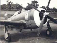 "Republic P-47D-2-RE, s/n 42-8380, YJ-A ""Lonesome Polecat"", 351st FS, 353 FG, pilot Lt. George N. Ahles"