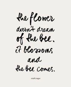 The flower... - Google+