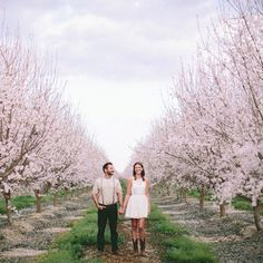 We are in love with this almond orchard engagement - such a magical place!