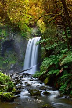 Hopetoun Falls wallpapers Wallpapers) – Wallpapers For Desktop Australia Wallpaper, Beautiful Waterfalls, Beautiful Landscapes, Photos Voyages, Natural Wonders, Amazing Nature, Nature Photos, Vacation Spots, Nature Photography