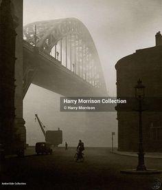 Harry Morrison - Amber Collection Morrisons, Sydney Harbour Bridge, Amber, Photographs, Photograph, Ivy, Photos