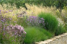 Mix of grasses and florals