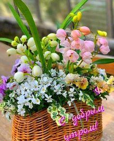 Цветочные Букеты, Цветочный Венок, Доброе Утро, Венки, Растения, Цветочные Композиции, Садоводство