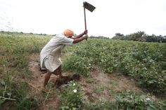 Sikh farmers battling for their land in Kutch - http://news54.barryfenner.info/sikh-farmers-battling-for-their-land-in-kutch/