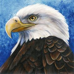 eagle painting | bald eagle portrait by dragonosx traditional art paintings animals ...