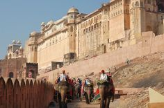 Majestic Jaipur Day Tour Take a private day our and explore this royal area rich with heritage, culture and architecture. Jaipur is an ideal tourist destination with splendid fortresses, majestic palaces, tranquil temples and beautiful havelis. Along with royal buildings and palaces, the city also offers exquisite handcrafted and spectacular jewelry. These intricate works of art add life and color to this Pink City's uniqueness.As you begin this tour, a chauffeur-driven privat...