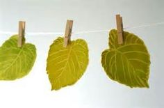 Green Leaves Decorations - peg leaves to twine for a simple garland. Green Leaves, Plant Leaves, Kids Party Decorations, Party Ideas, Wedding Events, Wedding Ideas, Weddings, Fundraising, Rustic Wedding