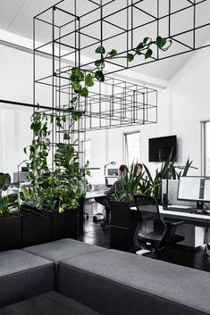 Tom Robertson Architects designed a new home for Candlefox HQ in Melbourne with a graphic, black and white interior dotted with a growing indoor garden. garden inspiration green Candlefox HQ: A Graphic, Black and White Office in Melbourne - Design Milk Black And White Office, Green Office, Black And White Interior, Small Office, Black And White Design, Black White, Bureau Design, Office Interior Design, Office Interiors