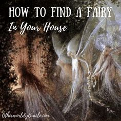 Curious if you have a fairy living with you? Learn how to find a fairy in your home, the best kinds of house fairies, and more! Real Fairies, Types Of Fairies, Where Do Fairies Live, Folklore, Magick Spells, Hedge Witchcraft, Green Witchcraft, Fairy Food, Nature Spirits