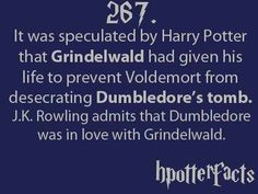 I really wish Grindlewald and Dumbledore would have ended up together at some point in the series, it would have been nice to see Dumbledore in love and happy.
