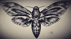 Death's-head hawkmoth. #inktober #inktober2016 #daily #inkdrawing #drawing #ink #moth #insect #artwork #art #artists_community #instaartist #sketch #artist #skull #moth #silenceofthelambs #design #illustration