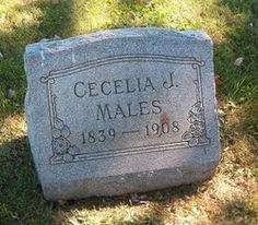 Cecelia Jane Davis Males (1839 - 1908) - Find A Grave Memorial  At Enfield cemetery, Cecelia was part of the large Davis family from Enfield. Her husband was William Pleasant Males, who was a baker. After the parents died all three Males daughters moved back to the Owensville, Indiana area.
