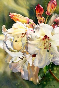 Illustration/Painting by Marney Ward Art Aquarelle, Art Watercolor, Watercolor Flowers, Painting Flowers, Art And Illustration, Arte Floral, Wow Art, Fine Art, Botanical Art