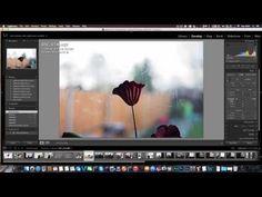 Nikon d750 Highlight metering - YouTube Nikon Camera Lenses, Nikon Cameras, D750 Nikon, Photo Quality, Love Photography, Drones, Highlight, Hands, Youtube
