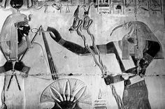 Thoth and Seti I at Abydos. Photography by Greg Reeder
