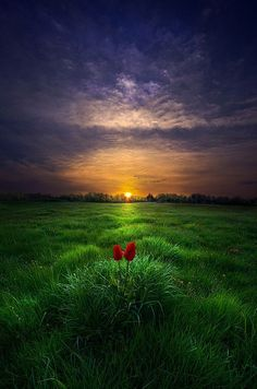 """crescentmoon06: """" by Phil Koch on 500px """" http://500px.com/photo/71059113/you-and-i-by-phil-koch"""