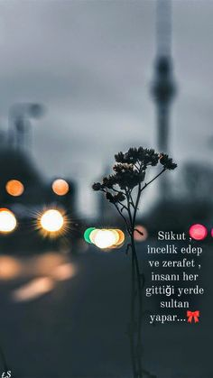Quotations, Qoutes, Love Promise, Maybe Tomorrow, Linkin Park, Sufi, Good Vibes, Beautiful Words, Cool Words