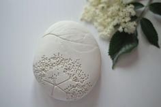 otchipotchi herbarium stone, sambucus