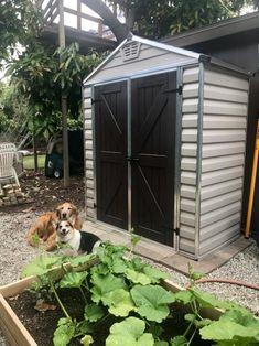 x 3 ft. Tan Storage - The Home Depot Diy Shed Kits, Diy Shed Plans, Garden Tool Shed, Garden Tool Storage, Tough Shed, Polycarbonate Roof Panels, Loafing Shed, Shed Construction, Cheap Sheds