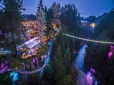 Canyon Lights festival at Capilano Canyon in North Vancouver, British Columbia, Canada Places To Travel, Places To See, Travel Destinations, Tall Christmas Trees, Christmas Lights, Holiday Lights, Christmas Holiday, Canadian Christmas, White Christmas